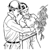 Semana de Arboricultura -Noreste