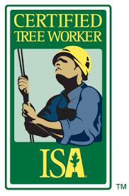 Examen de Certificación ISA para Trabajadores del Árbol – Marzo 2019, Oaxaca, México