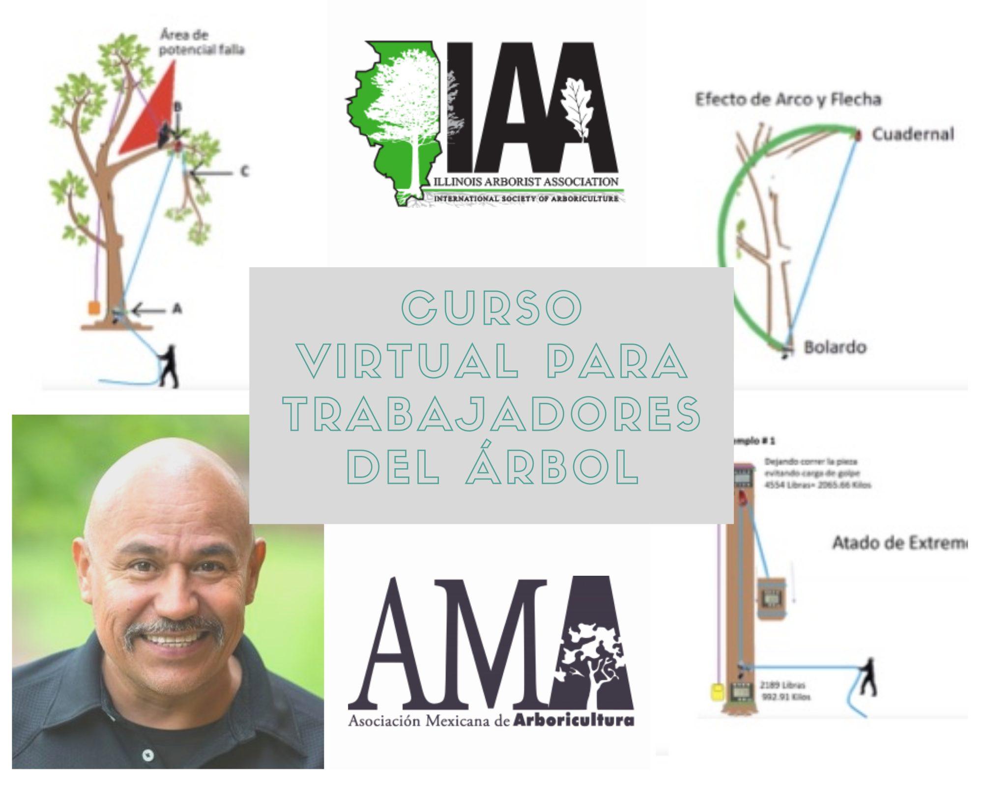 Curso Virtual para Trabajadores de los Árboles