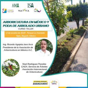 Arboricultura en México y Poda de arbolado urbano