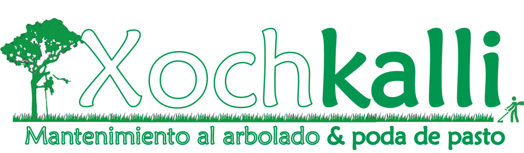 XOCHKALLI