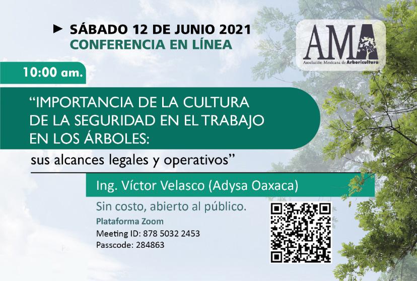 Conferencia – Importancia de la Cultura de la Seguridad en el Trabajo en los Árboles: sus alcances legales y operativos