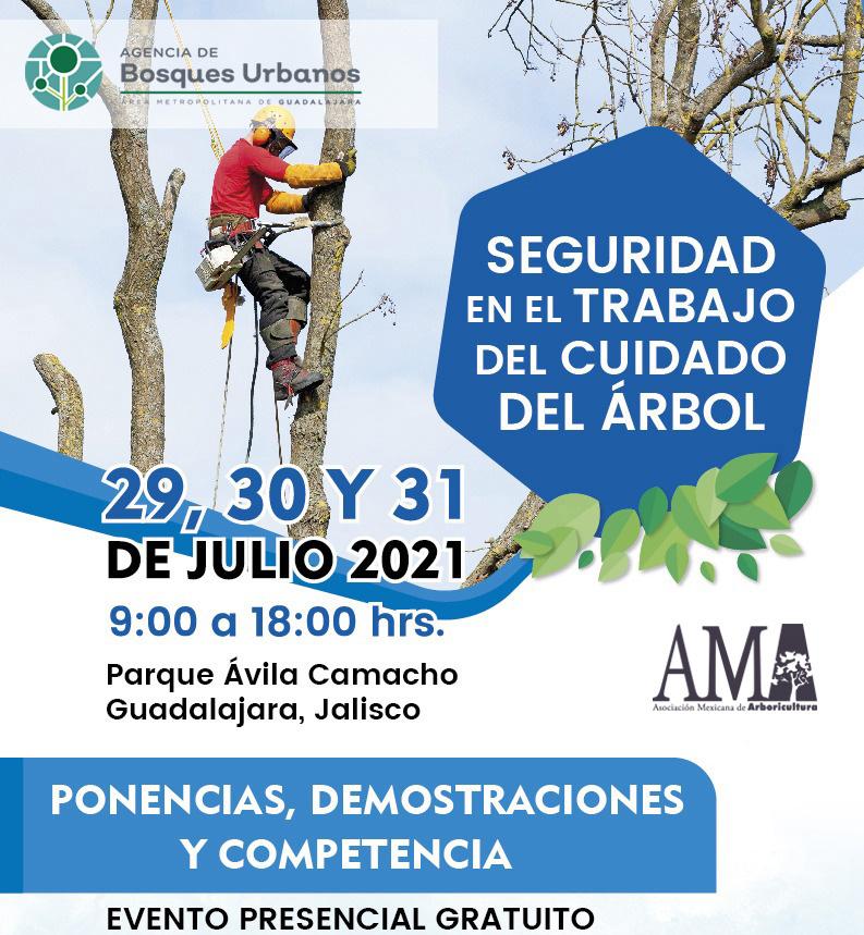 Seguridad en el Trabajo del Cuidado del Árbol